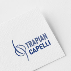 Custom professional logo